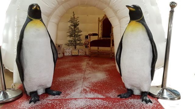 Hire a Santas Grotto